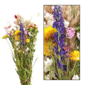 Bouquet de fleurs séchées