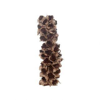 Cacho coco avec face plate (L. 60 cm)